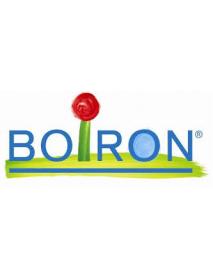 BOIRON CANDIDA ALBICANS 15CH GRANULI