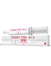 ACME CARNITON-B12 PASTA 1 SIRINGA 100G