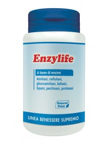 NATURAL POINT ENZYLIFE 120 CAPSULE