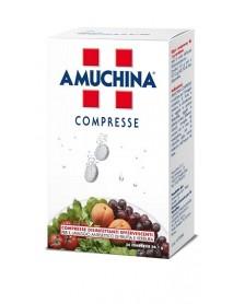 AMUCHINA 24 COMPRESSE DISINFETTANTI 1G